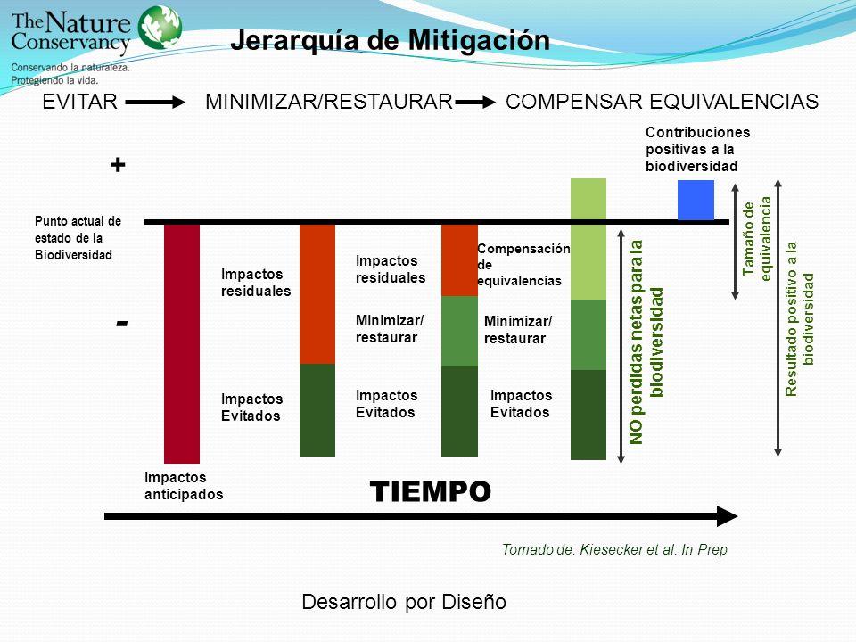 TIEMPO - Jerarquía de Mitigación +