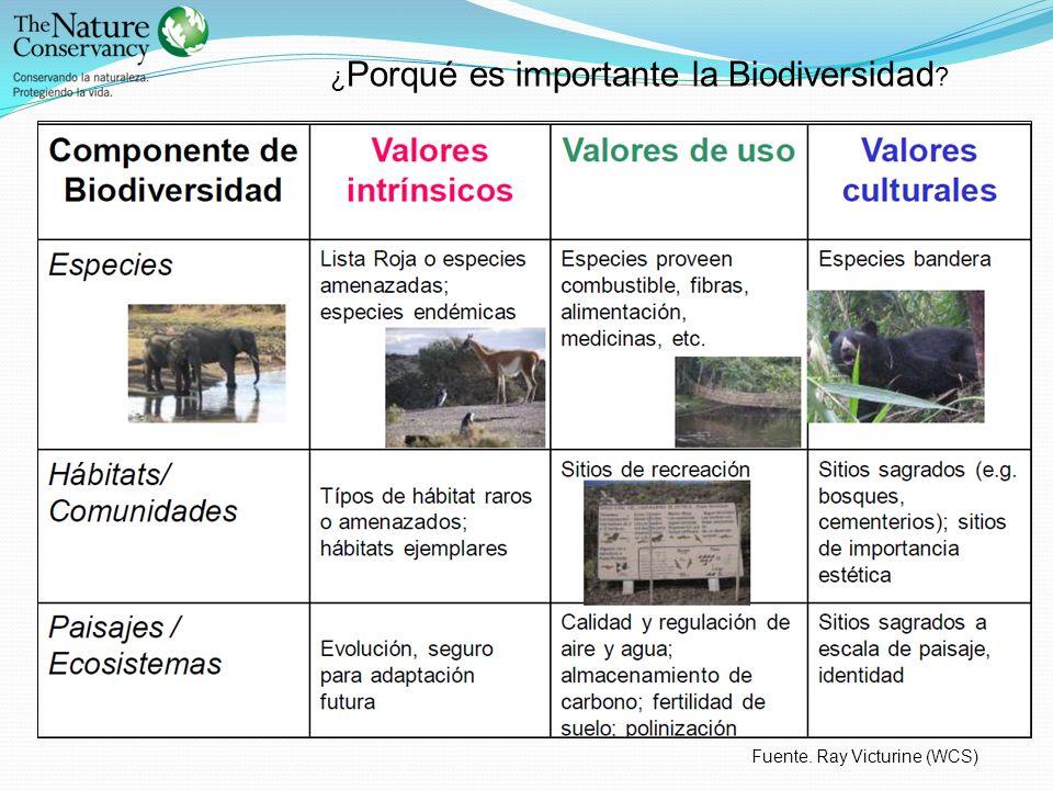 ¿Porqué es importante la Biodiversidad