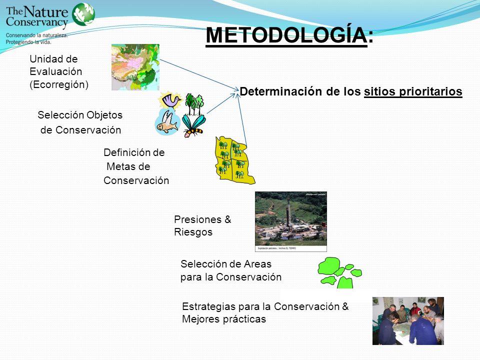 METODOLOGÍA: Determinación de los sitios prioritarios