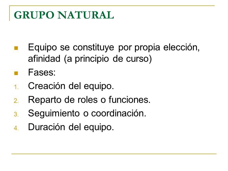 GRUPO NATURAL Equipo se constituye por propia elección, afinidad (a principio de curso) Fases: Creación del equipo.