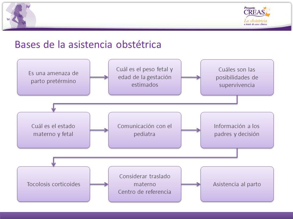 Bases de la asistencia obstétrica