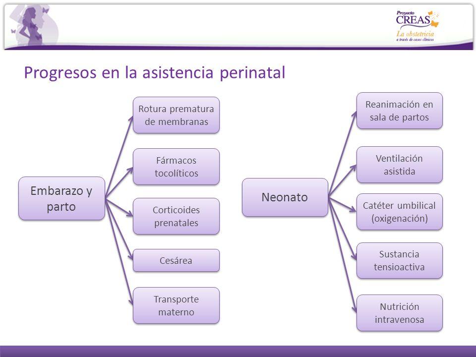 Progresos en la asistencia perinatal