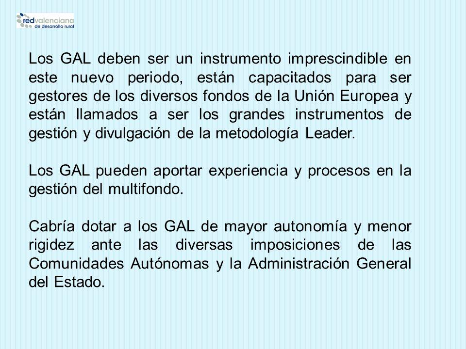 Los GAL deben ser un instrumento imprescindible en este nuevo periodo, están capacitados para ser gestores de los diversos fondos de la Unión Europea y están llamados a ser los grandes instrumentos de gestión y divulgación de la metodología Leader.