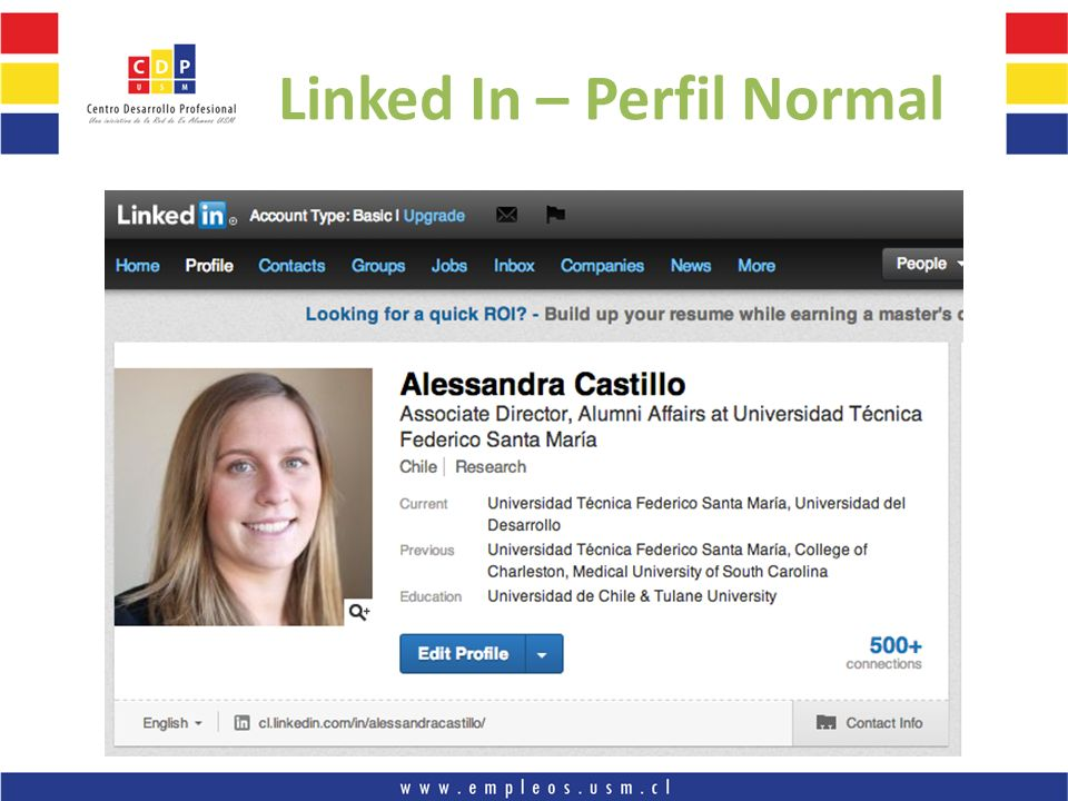 Linked In – Perfil Normal