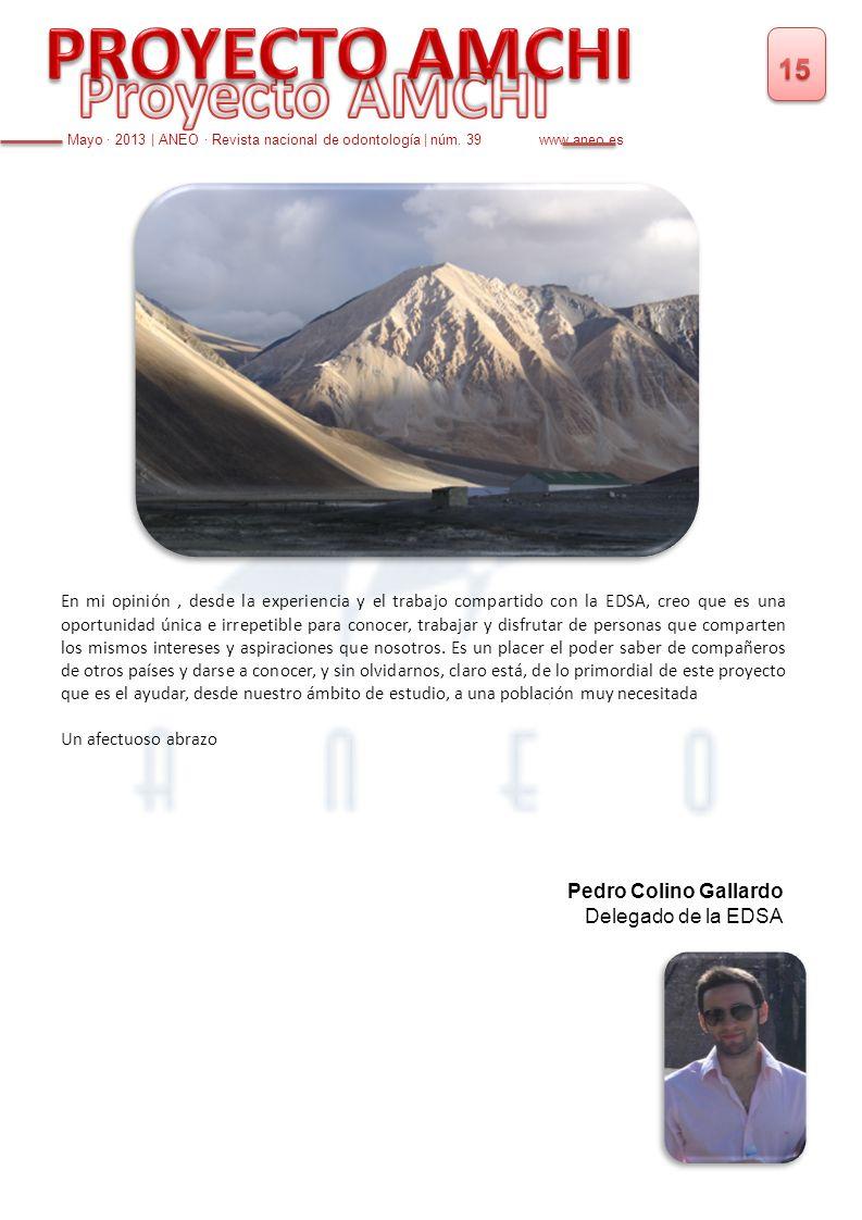 PROYECTO AMCHI Proyecto AMCHI 15 Pedro Colino Gallardo