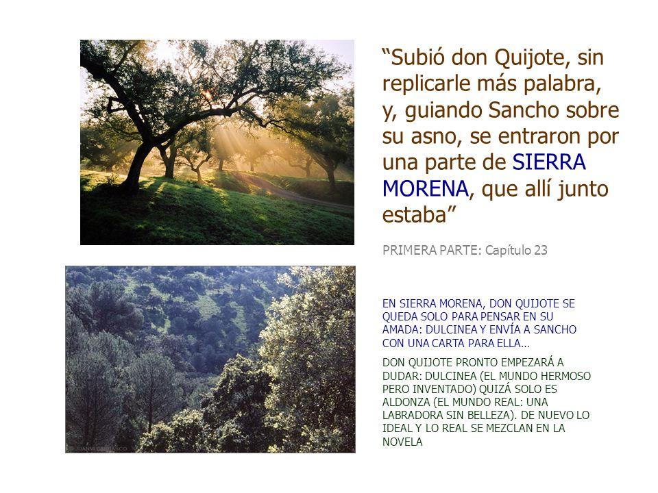 Subió don Quijote, sin replicarle más palabra, y, guiando Sancho sobre su asno, se entraron por una parte de SIERRA MORENA, que allí junto estaba