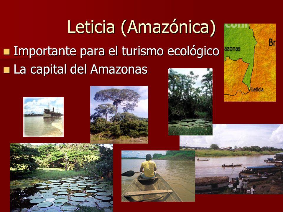Leticia (Amazónica) Importante para el turismo ecológico