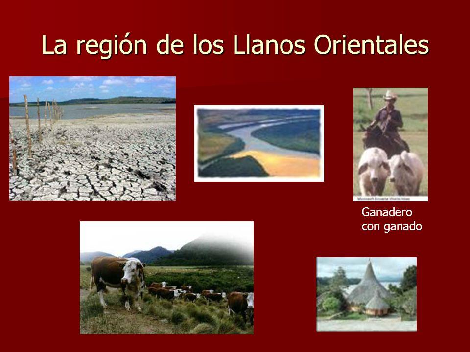 La región de los Llanos Orientales