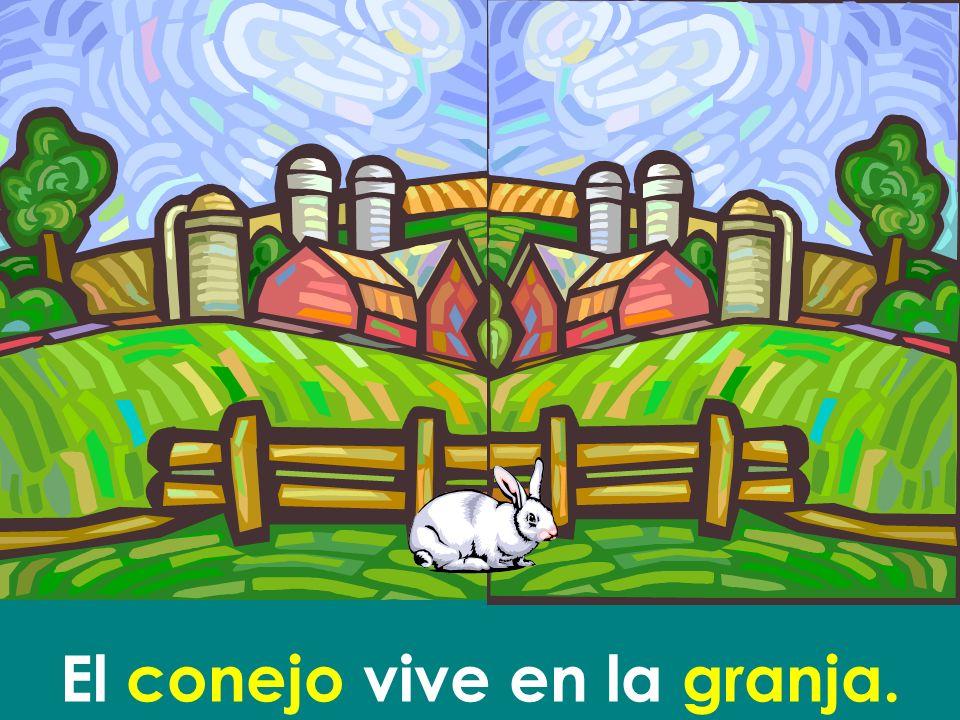 El conejo vive en la granja.