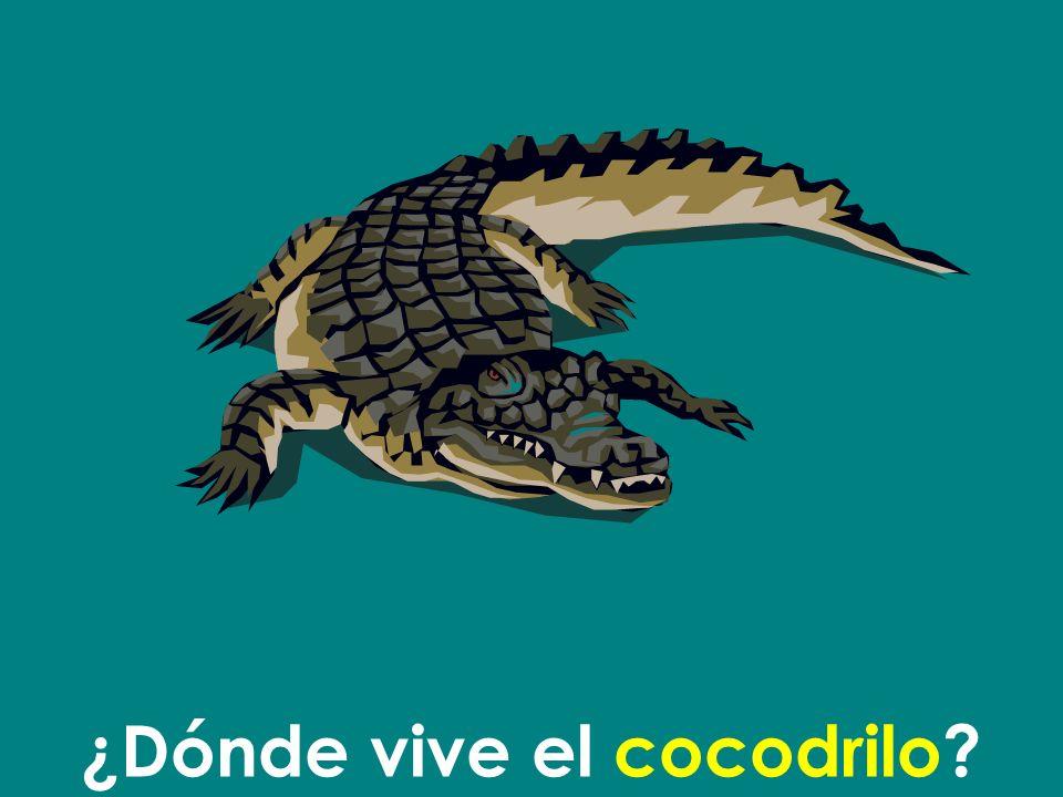 ¿Dónde vive el cocodrilo