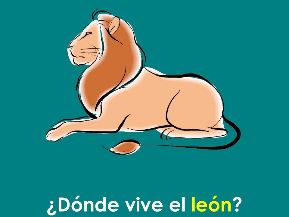 ¿Dónde vive el león