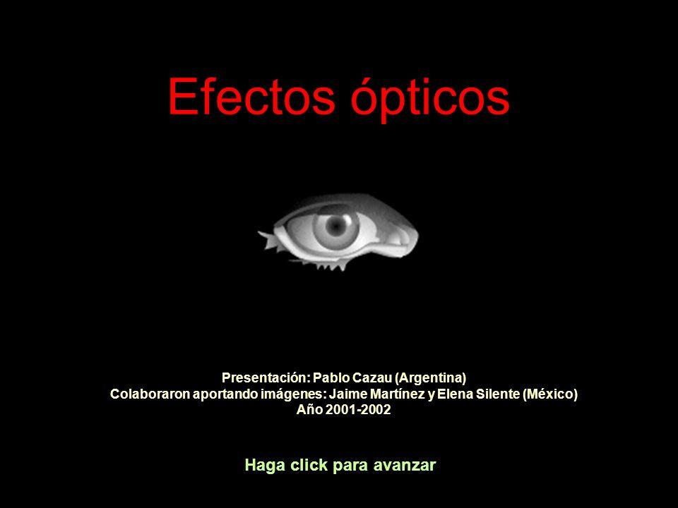 Presentación: Pablo Cazau (Argentina)
