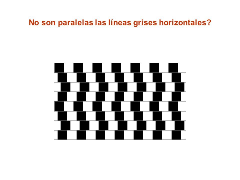 No son paralelas las líneas grises horizontales