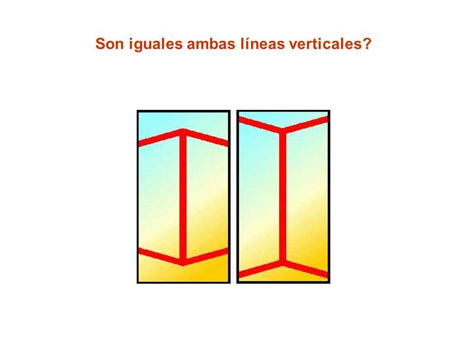 Son iguales ambas líneas verticales