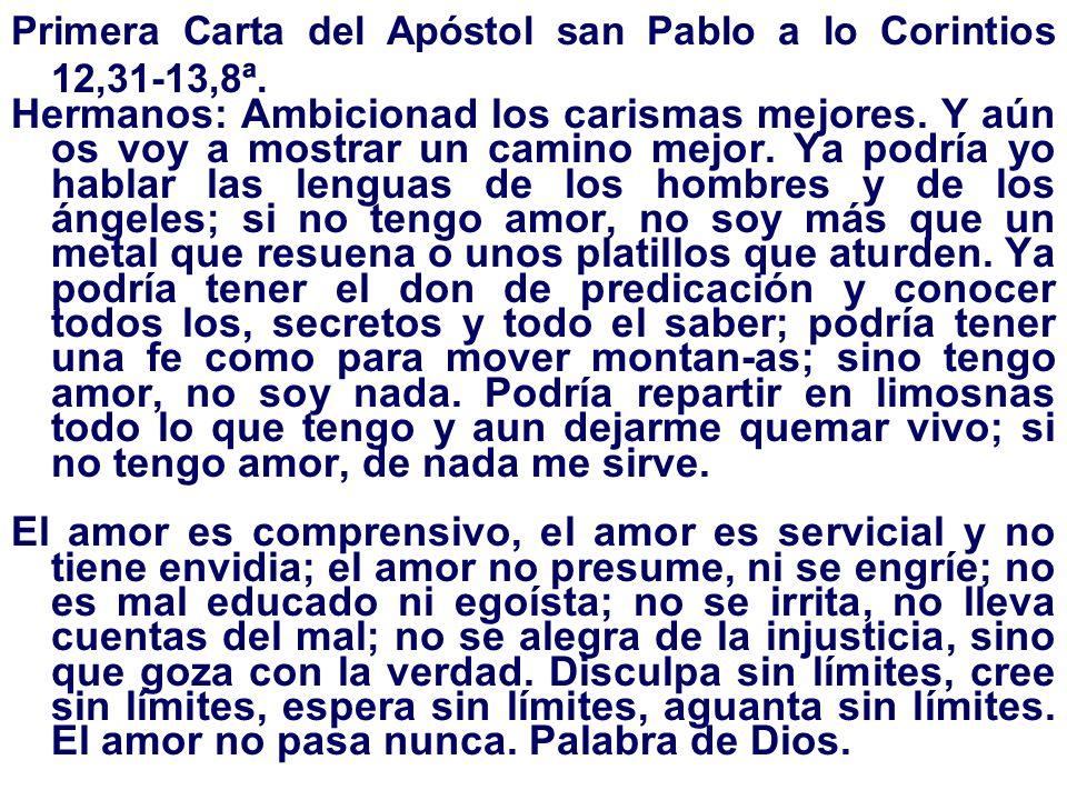 Primera Carta del Apóstol san Pablo a lo Corintios 12,31-13,8ª.