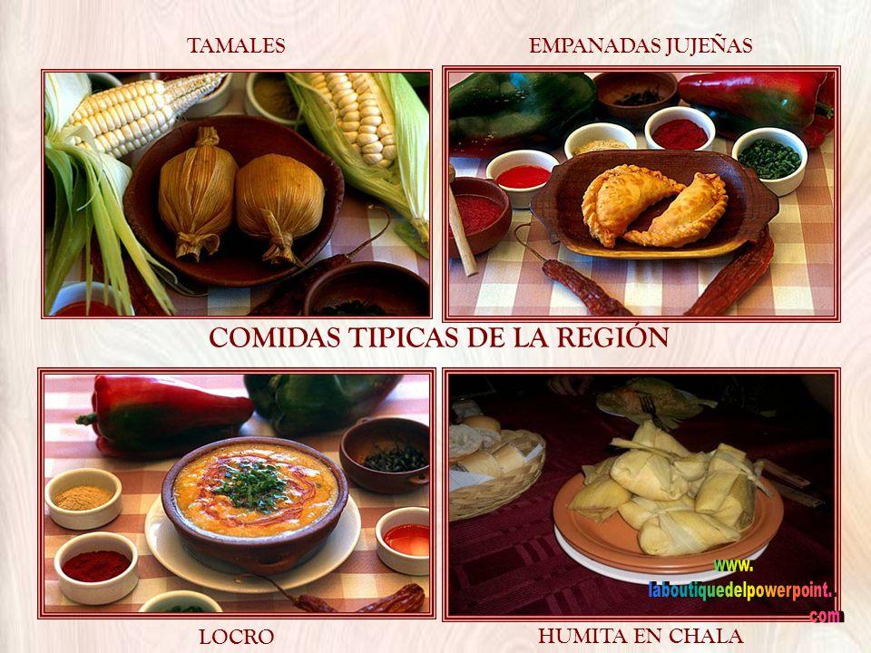 COMIDAS TIPICAS DE LA REGIÓN