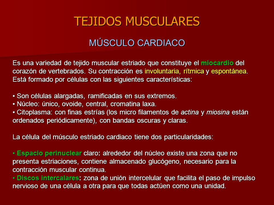 TEJIDOS MUSCULARES MÚSCULO CARDIACO