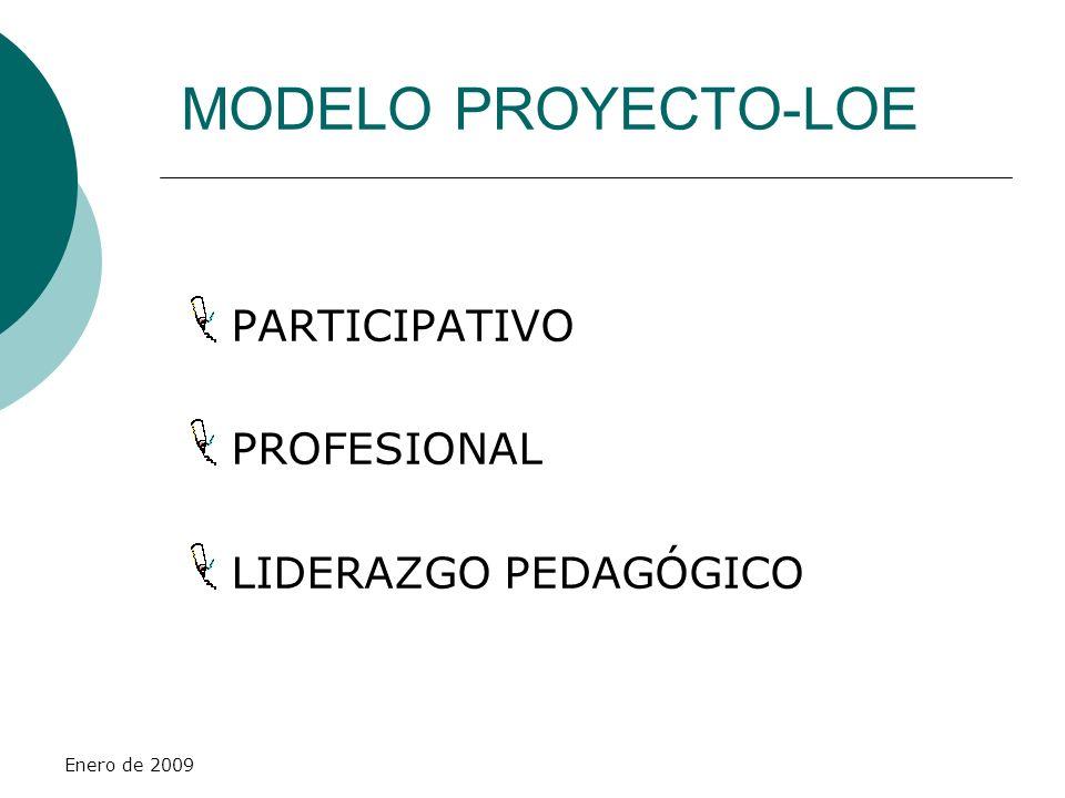 MODELO PROYECTO-LOE PARTICIPATIVO PROFESIONAL LIDERAZGO PEDAGÓGICO