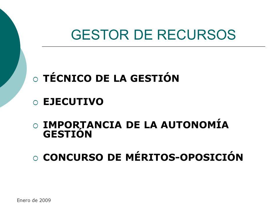 GESTOR DE RECURSOS TÉCNICO DE LA GESTIÓN EJECUTIVO