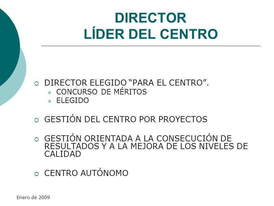 DIRECTOR LÍDER DEL CENTRO