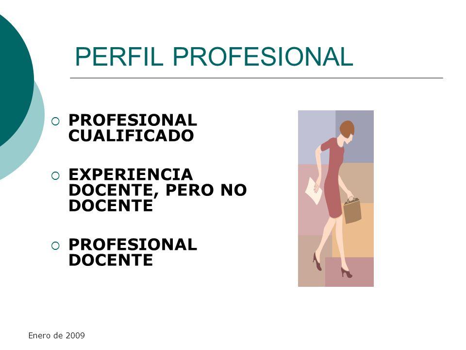 PERFIL PROFESIONAL PROFESIONAL CUALIFICADO