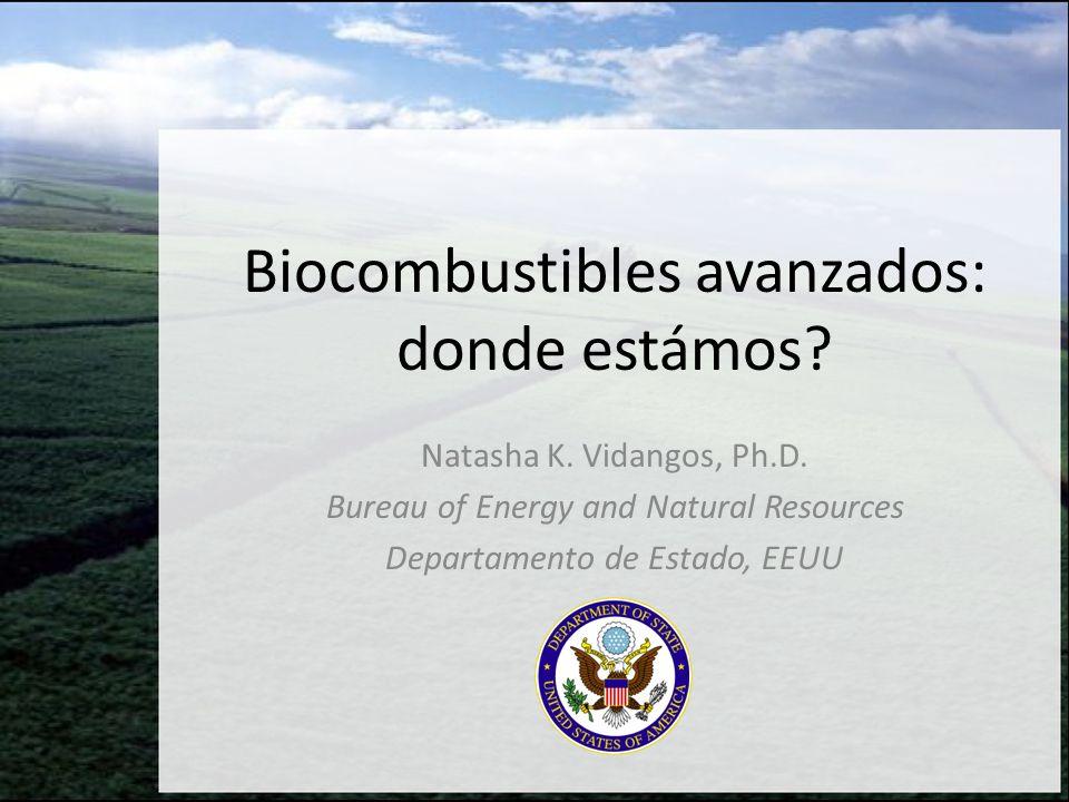 Biocombustibles avanzados: donde estámos
