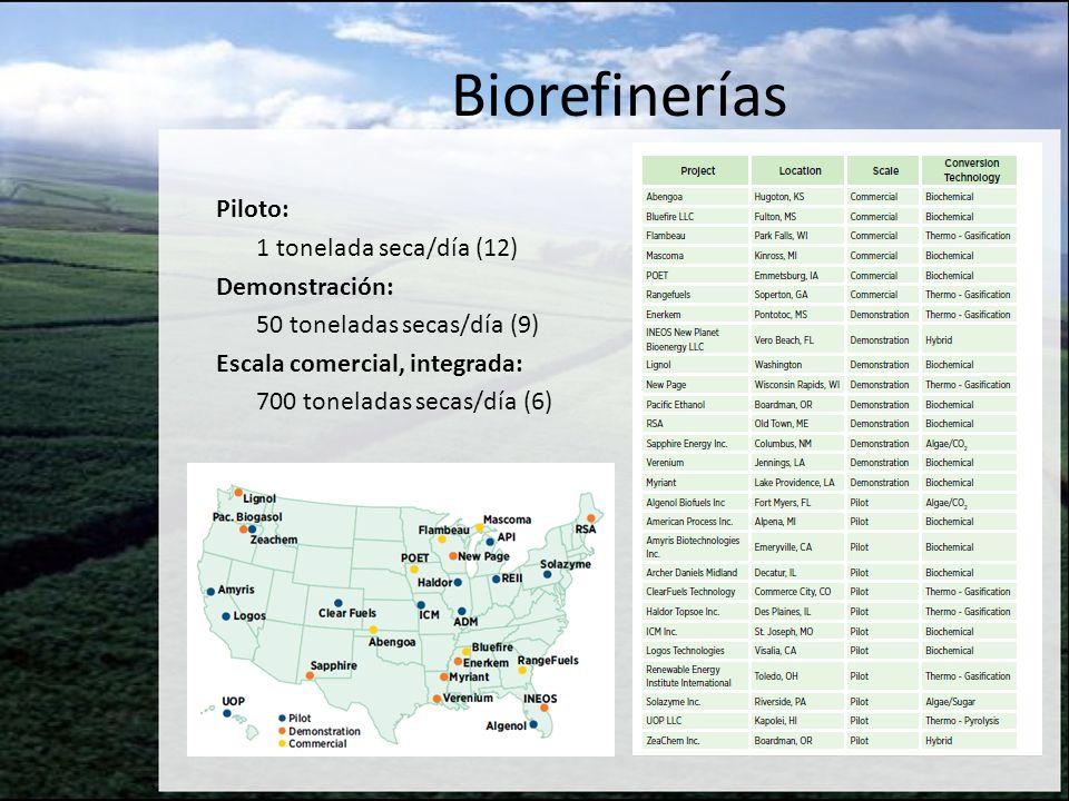 Biorefinerías Piloto: 1 tonelada seca/día (12) Demonstración: 50 toneladas secas/día (9) Escala comercial, integrada: 700 toneladas secas/día (6)