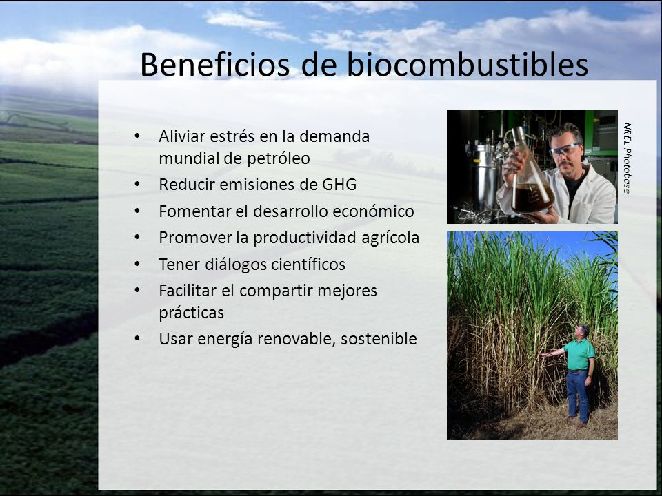 Beneficios de biocombustibles