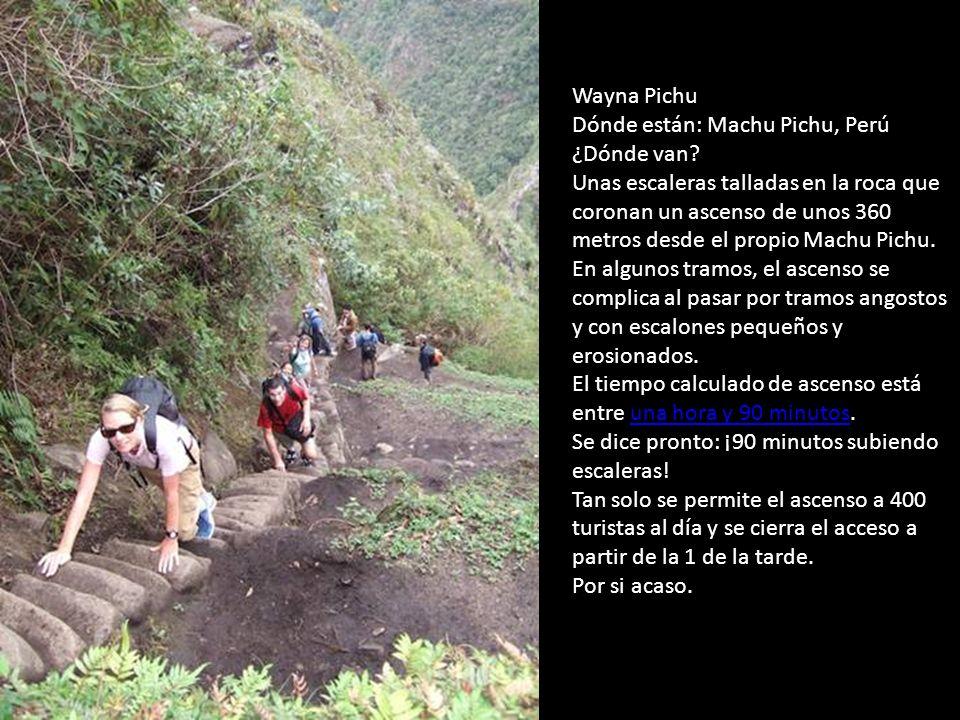 Wayna Pichu Dónde están: Machu Pichu, Perú ¿Dónde van