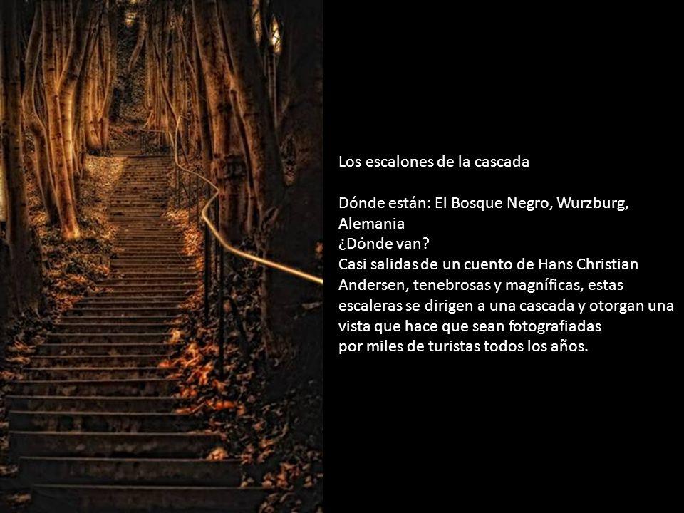 Los escalones de la cascada Dónde están: El Bosque Negro, Wurzburg, Alemania ¿Dónde van Casi salidas de un cuento de Hans Christian Andersen, tenebrosas y magníficas, estas