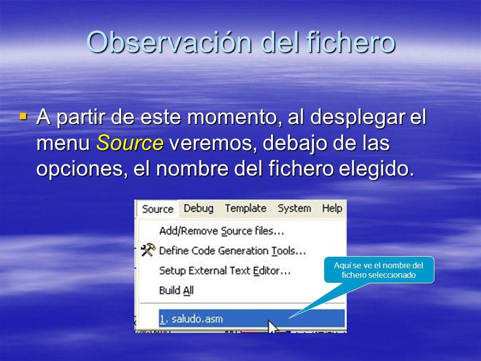 Observación del fichero