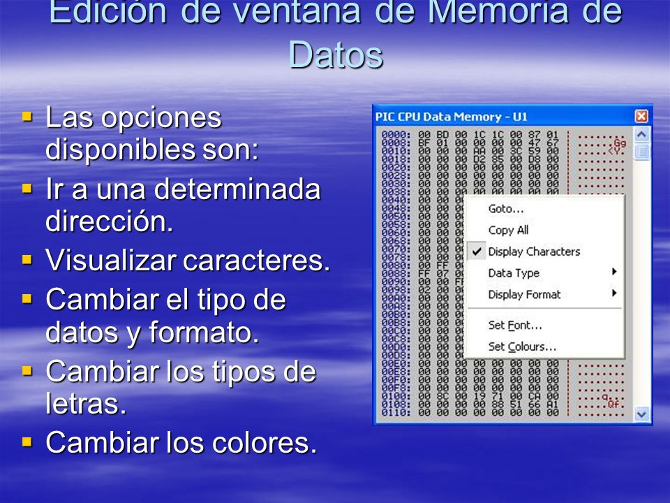 Edición de ventana de Memoria de Datos