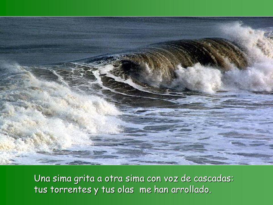 Una sima grita a otra sima con voz de cascadas: tus torrentes y tus olas me han arrollado.