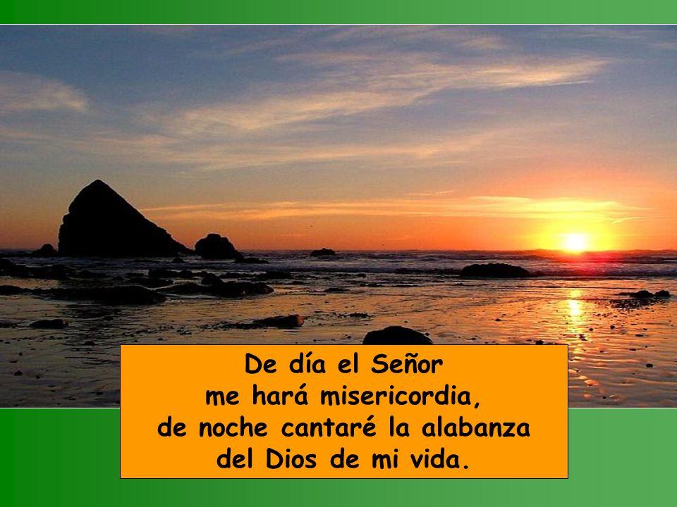 De día el Señor me hará misericordia, de noche cantaré la alabanza del Dios de mi vida.