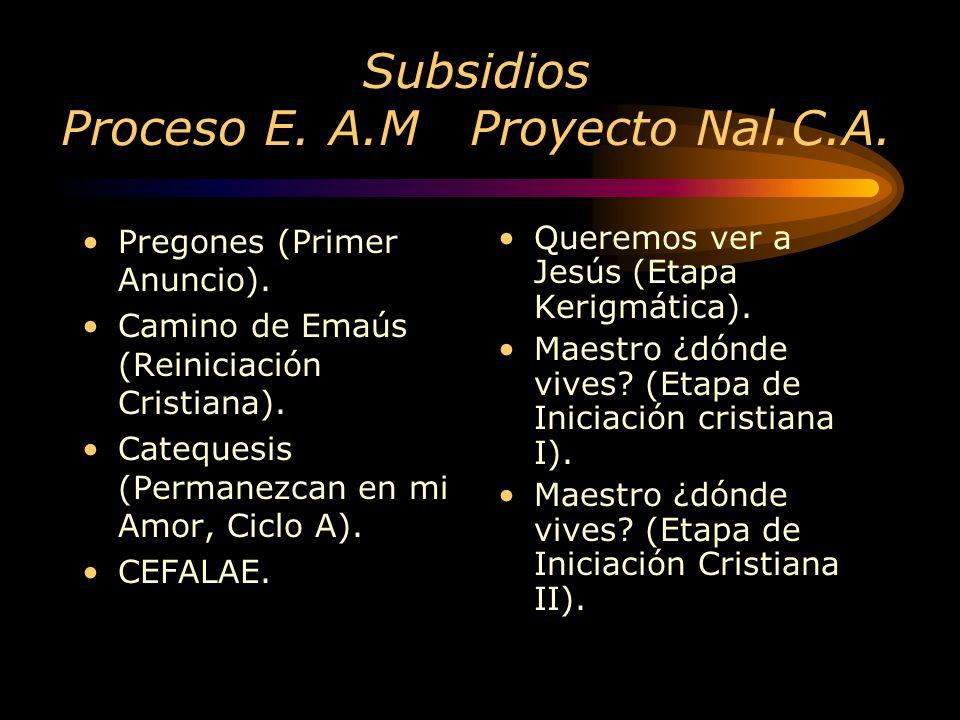 Subsidios Proceso E. A.M Proyecto Nal.C.A.