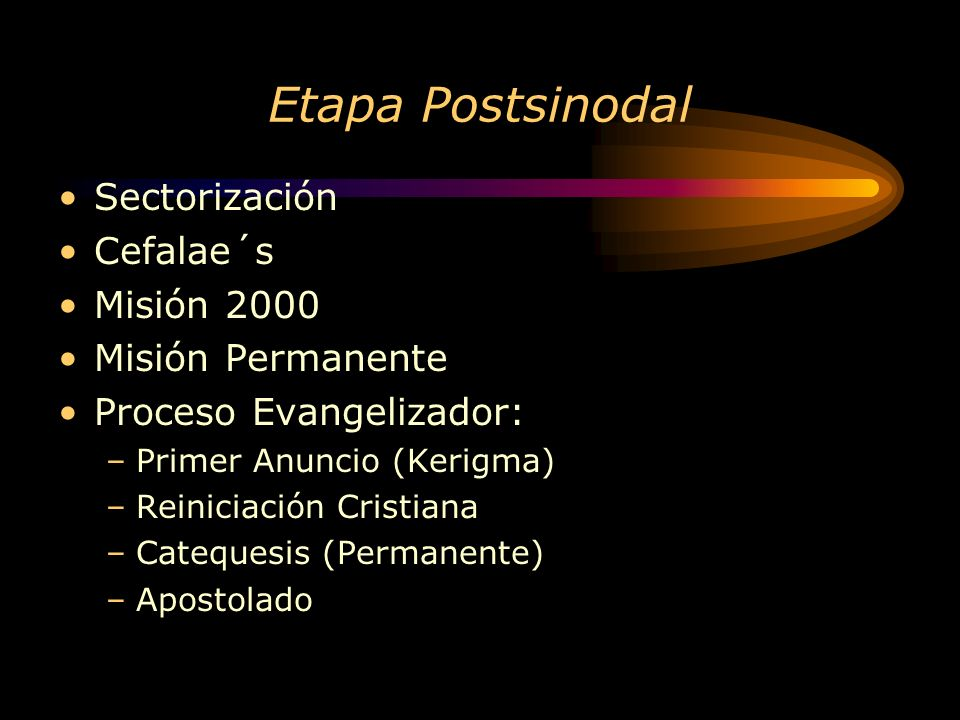 Etapa Postsinodal Sectorización Cefalae´s Misión 2000
