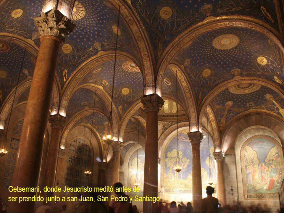 Getsemaní, donde Jesucristo meditó antes de