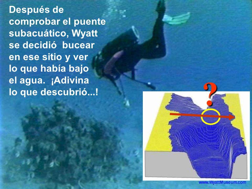 Después de comprobar el puente subacuático, Wyatt se decidió bucear en ese sitio y ver lo que había bajo el agua. ¡Adivina lo que descubrió...!