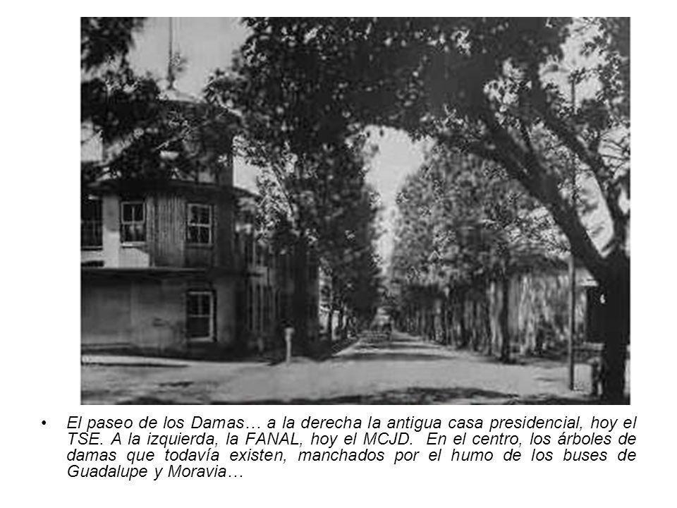 El paseo de los Damas… a la derecha la antigua casa presidencial, hoy el TSE.