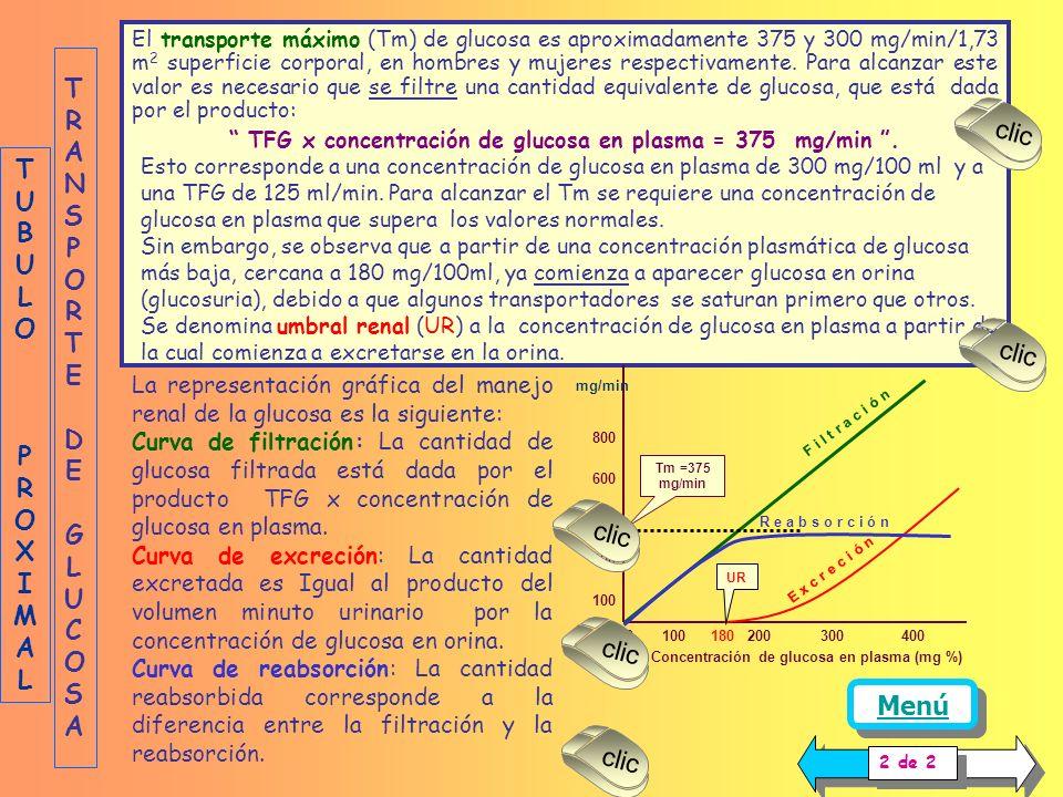 TFG x concentración de glucosa en plasma = 375 mg/min .