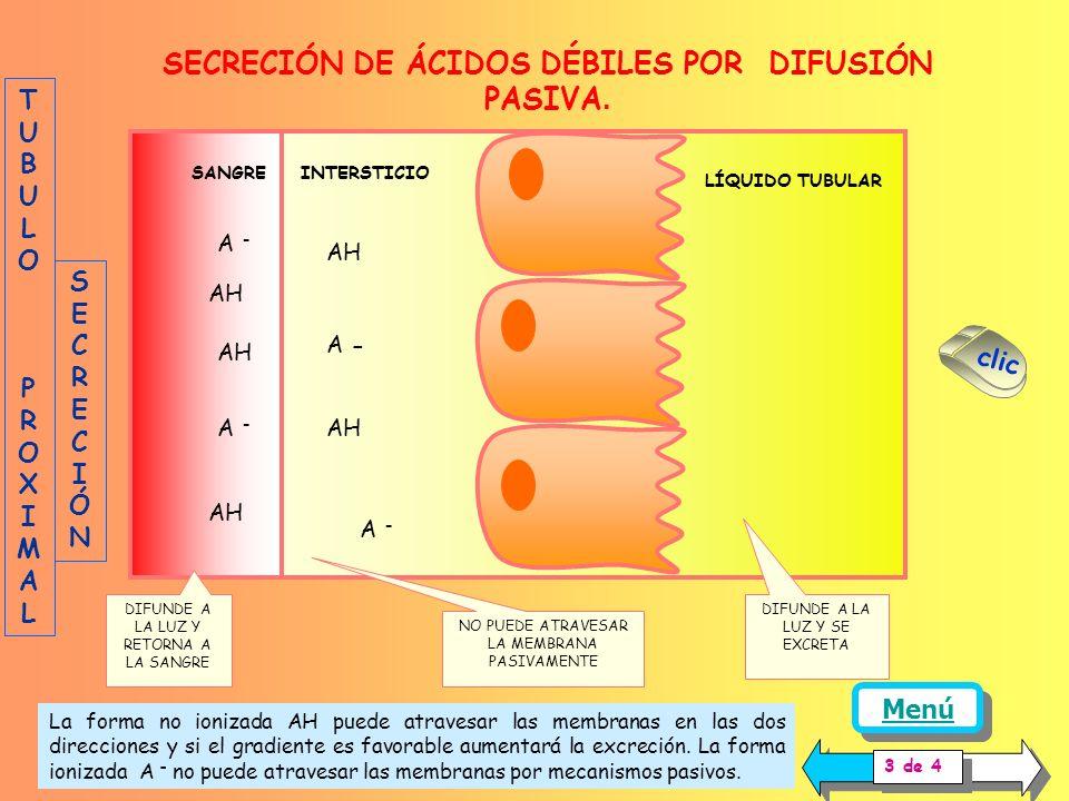 SECRECIÓN DE ÁCIDOS DÉBILES POR DIFUSIÓN PASIVA.