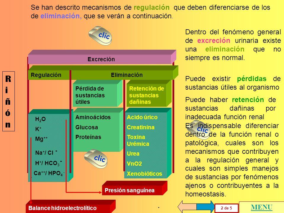 Se han descrito mecanismos de regulación que deben diferenciarse de los de eliminación, que se verán a continuación.