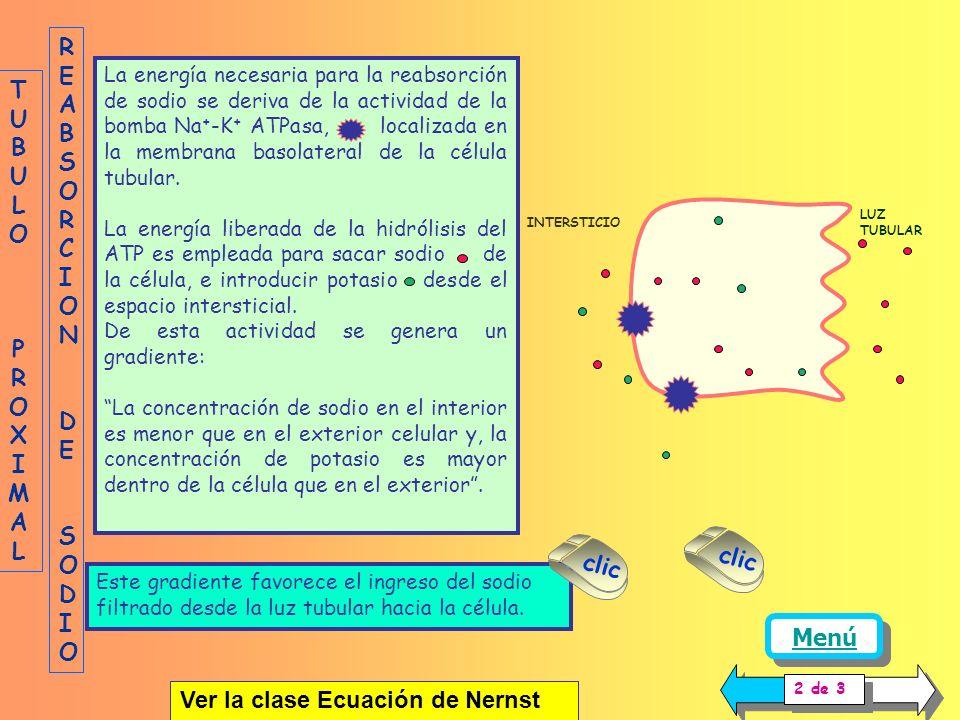 Ver la clase Ecuación de Nernst