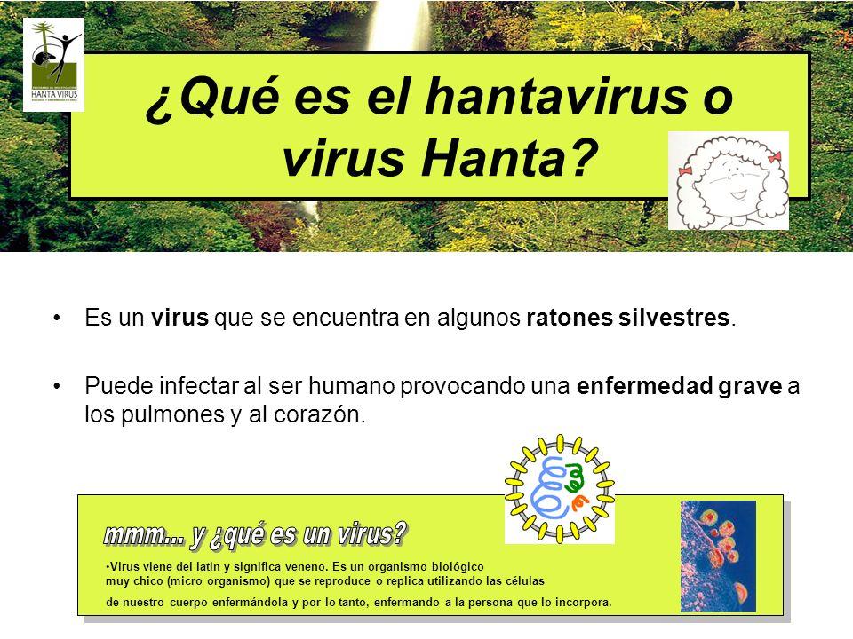 ¿Qué es el hantavirus o virus Hanta