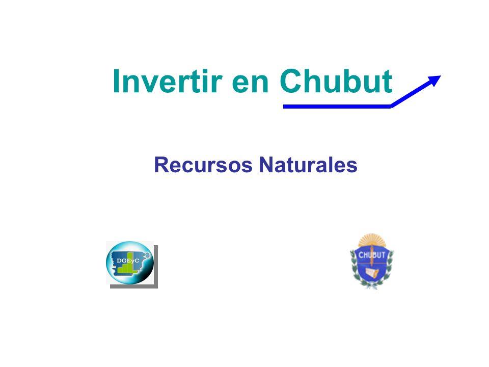 Invertir en Chubut Recursos Naturales