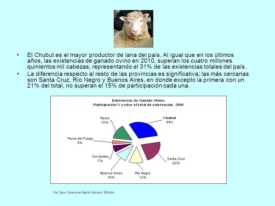 El Chubut es el mayor productor de lana del país