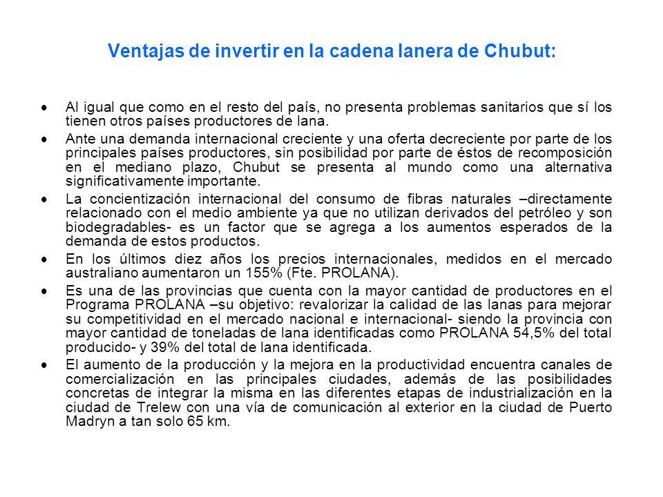 Ventajas de invertir en la cadena lanera de Chubut: