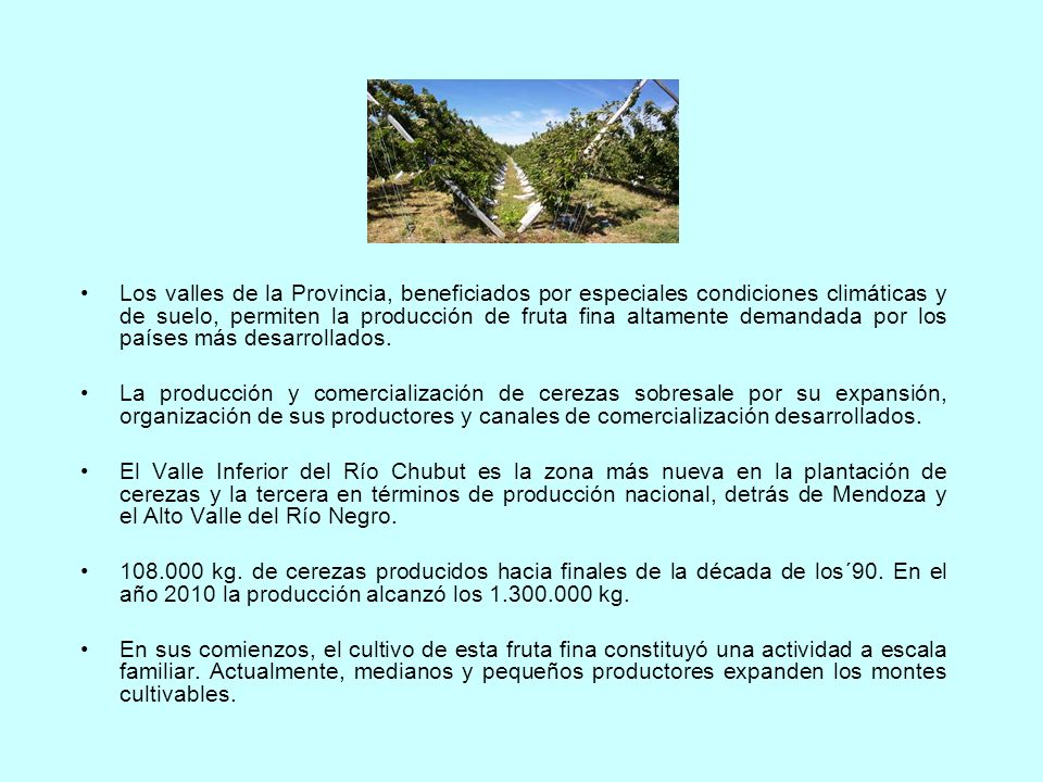 Los valles de la Provincia, beneficiados por especiales condiciones climáticas y de suelo, permiten la producción de fruta fina altamente demandada por los países más desarrollados.