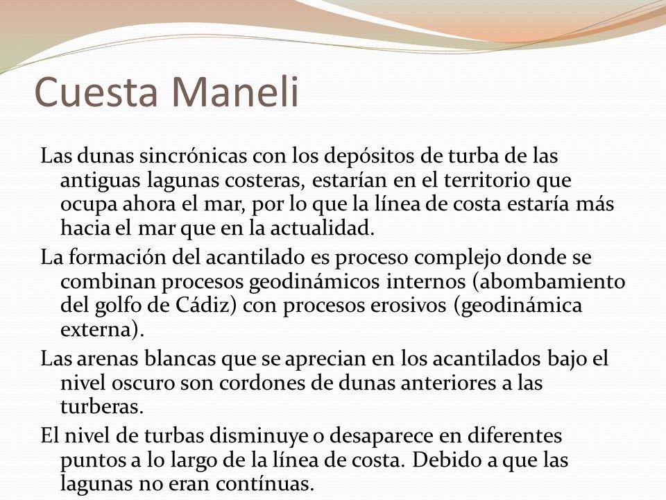 Cuesta Maneli