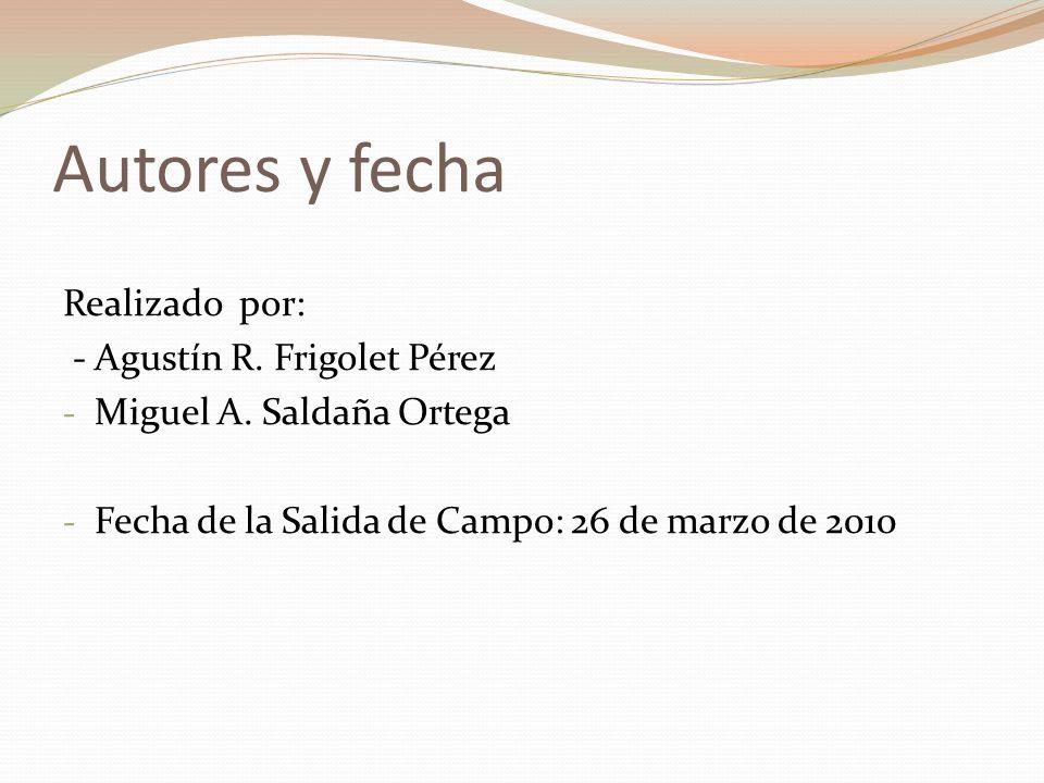 Autores y fecha Realizado por: - Agustín R. Frigolet Pérez